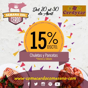 15% dscto | CERDYCAR