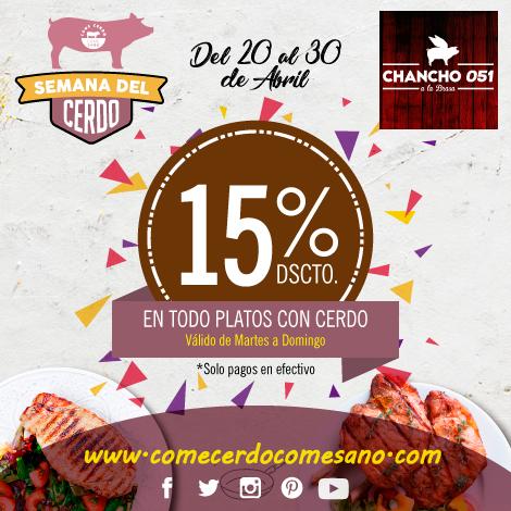 15% Dscto | CHANCHO 051