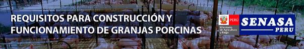 BANNER_REQUISITOS_SENASA18.png