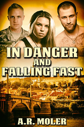 In Danger and Falling Fast [In Danger Book 2] by A.R. Moler