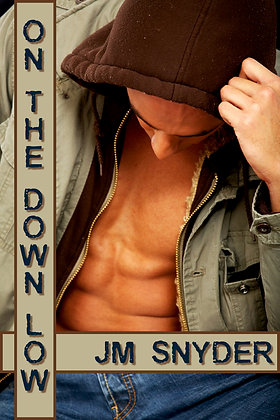 On The Down Low by J.M. Snyder