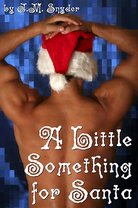 A Little Something for Santa by J.M. Snyder