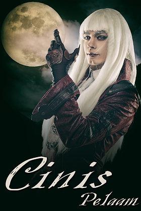 Cinis by Pelaam
