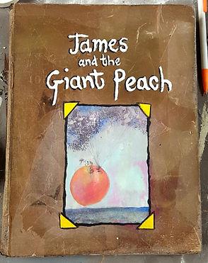 JamesandthGiantPeachChildrensBook.jpg