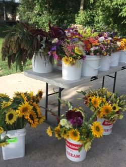 Kokoro flower buckets