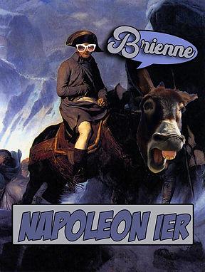 montage napoleon.jpg