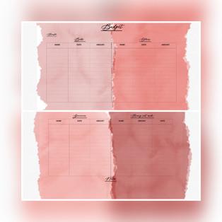 Budget Tracker Duo Pastel — $2