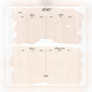 Buget Tracker Pastel 2 — $2