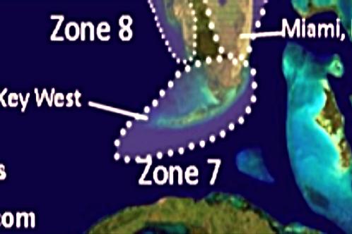 Zone 7 2020 Hurricane Landfall Prediction - webinars not included