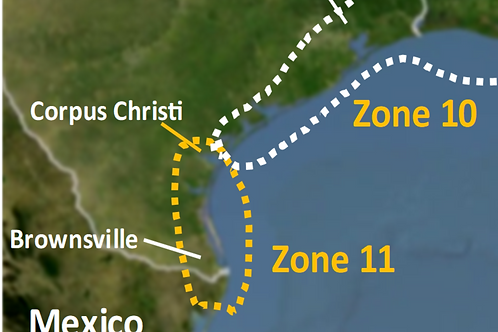 2021 Zone 11 - Corpus Christi to Brownsville Texas - webinars not included