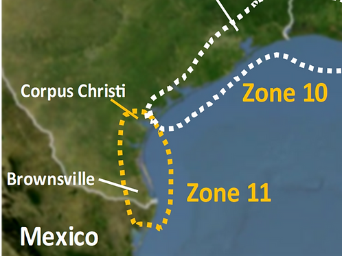 2020 Zone 11 - Corpus Christi to Brownsville Texas - webinars not included