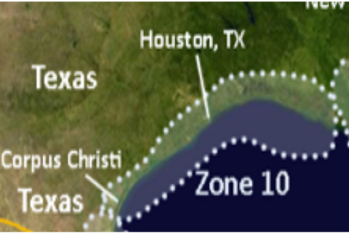 Zone 10 Central Texas to western Louisiana