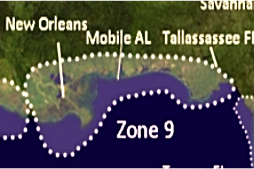 Zone 9 2021 Hurricane Landfall Prediction - webinars not included