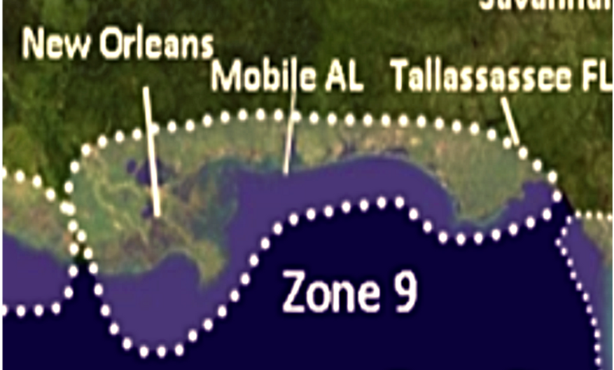 Zone 9 2021 Hurricane Landfall Prediction - webinars not included