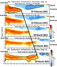 SSTs Subsurface 29 March 2021.png