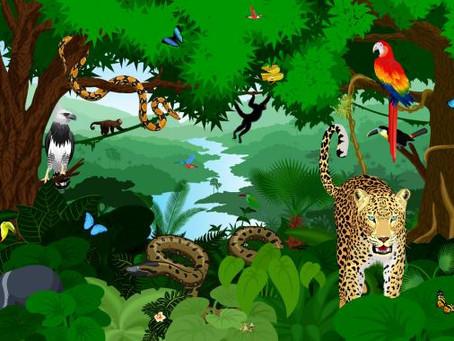 Qué es el hábitat terrestre: definición, tipos y animales