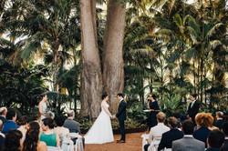 alison-billy-wedding-186