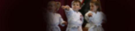 kanga_karate_banner.jpg