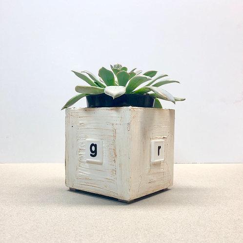 """Grow"" planter box"