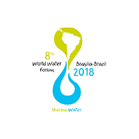 World Water Forum.png