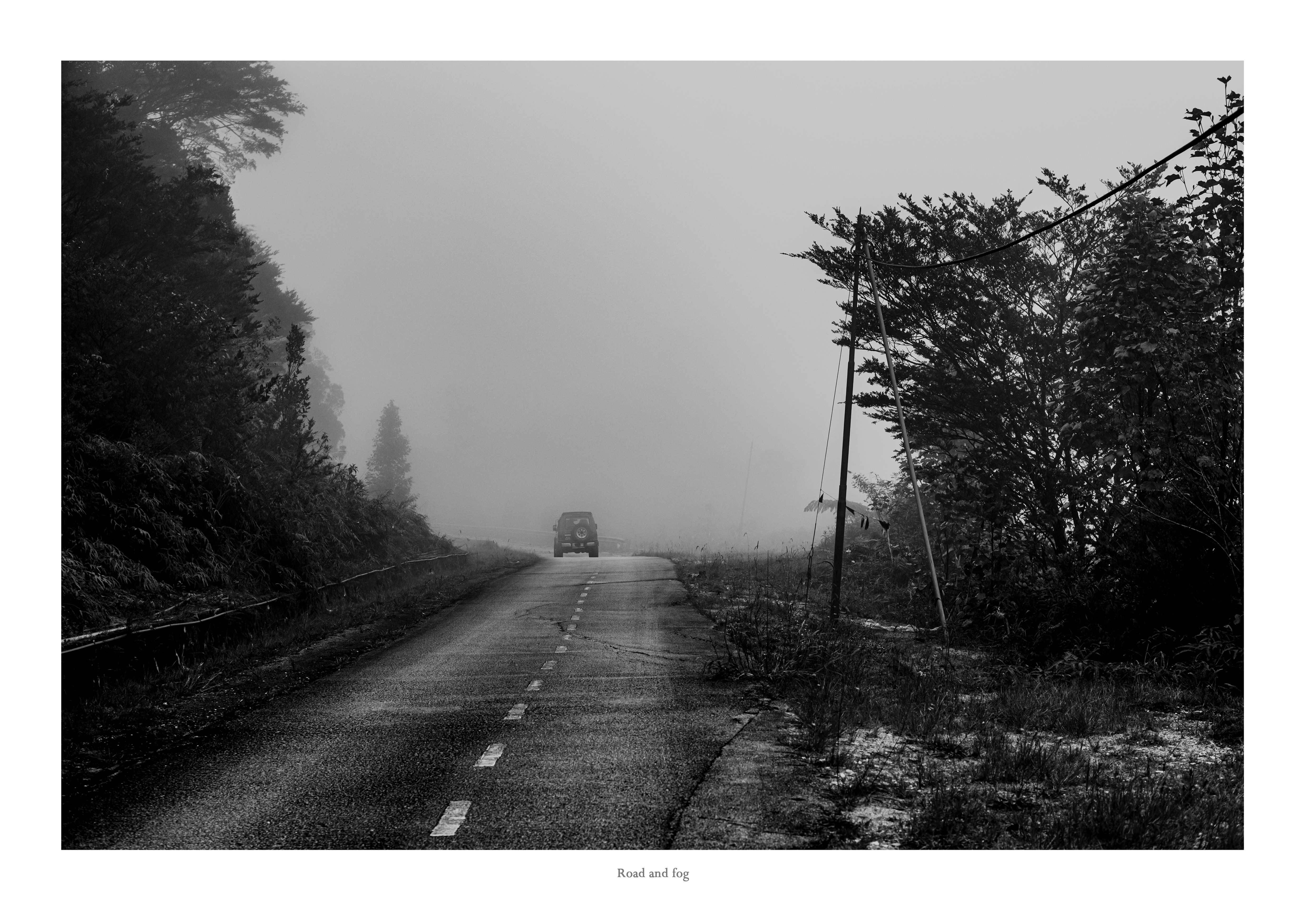 The road and fog