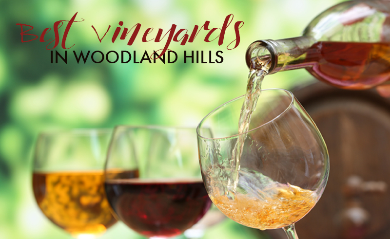 Best Vineyards Near Woodland Hills