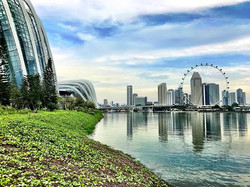 Singapore is like a dream, a Utopia we h