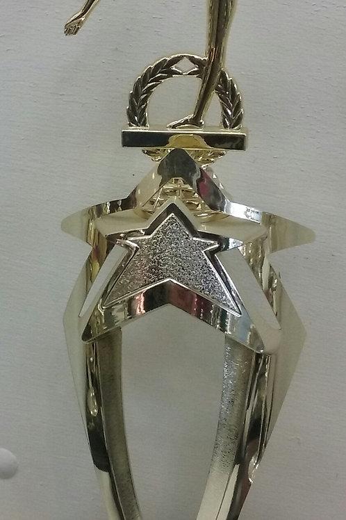 "Star Craze 6"" Trophy"