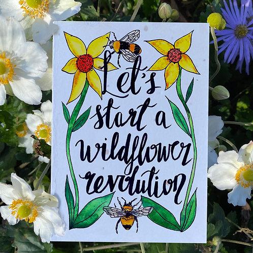 Let's Start A Wildflower Revolution