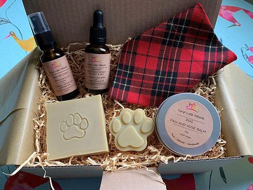 Pampered Pooch Gift Set