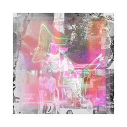 Whitagram-Image