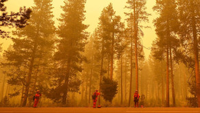 Estados Unidos: Incêndio na Califórnia queima 550 casas