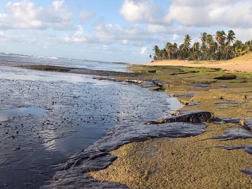 O Consórcio Nordeste fala sobre as manchas de óleo nas praias da região