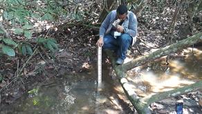 Inpa e Samsung vão implantar primeira rede de monitoramento ambiental em Manaus