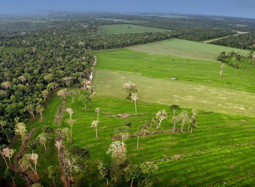 Justiça ambiental e barragens amazônicas: Propostas para neutralizar o licenciamento