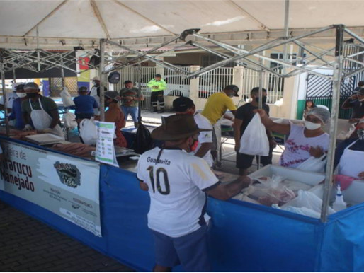 Feira de Pirarucu Manejado e produtos da Agricultura Familiar em Tefé