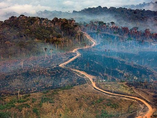Amazônia em Chamas: Sobrevoo flagra avanço da degradação ambiental no território Munduruku