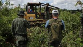 Grileiros e madeireiros de Rondônia invadem Acre