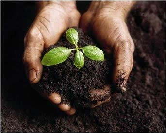Seminário destacará tecnologias sustentáveis de manejo e conservação da água e do solo