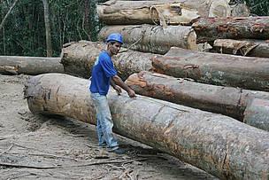 © WWF-Brasil/Juvenal Pereira