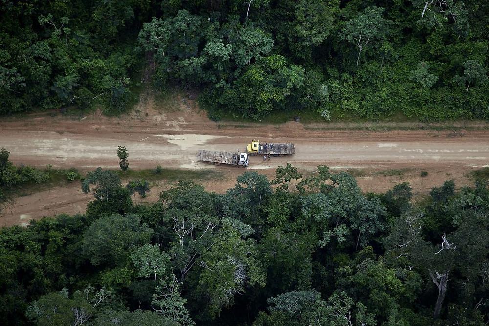 Caminhões com toras de madeira ilegal em Uruará, Pará em 20/03/2014 (Foto: Marizilda Cruppe/Greenpeace)