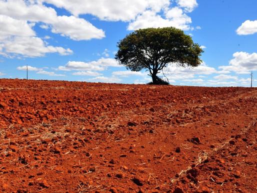 Fundo Clima tem 203 projetos em execução