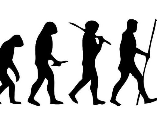Design inteligente não é 'alternativa' à teoria da evolução. E nem é ciência