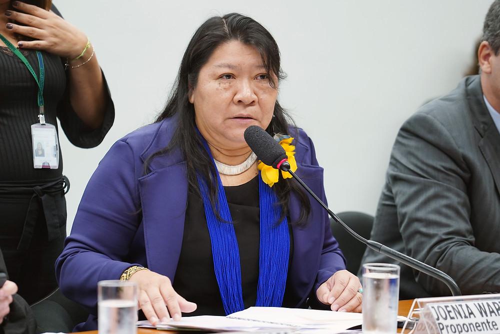 Joenia Wapichana, única representante dos povos indígenas na Câmara, se diz indignada com a edição da medida provisória/Foto (Crédito: Pablo Valadares/Câmara dos Deputados)