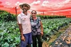 Estratégias, políticas, programas e ações contribuíram para a melhoria na vida das famílias no campo Divulgação/Sérgio Amaral