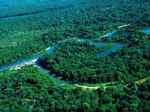 Governo edita decreto com regras para regularização fundiária na Amazônia