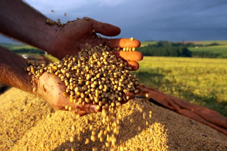 Colheita e plantação de soja no interior de Cascavel Foto: Agência de Notícias do PR