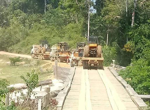 Ibama impede avanço de exploração madeireira em áreas de conservação na divisa do AM com MT