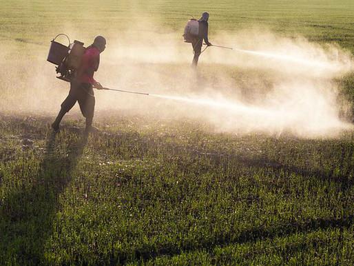 Vacina, não; veneno, sim. Governo Bolsonaro libera 10 agrotóxicos produzidos na China