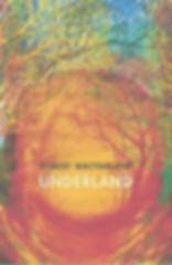 Underland front cover_edited.jpg